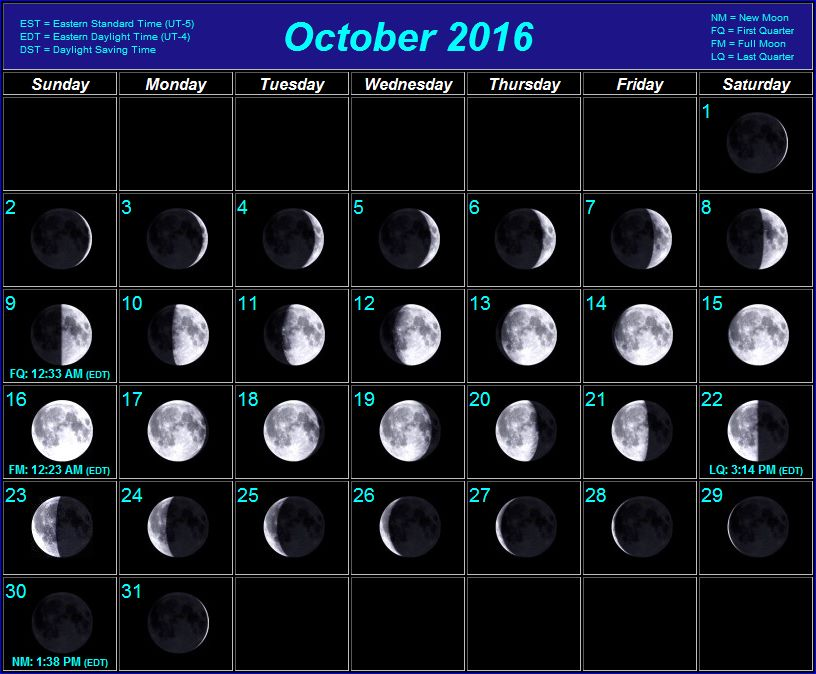 List of synonyms and antonyms of the word lunar calendar for Moon phases and fishing